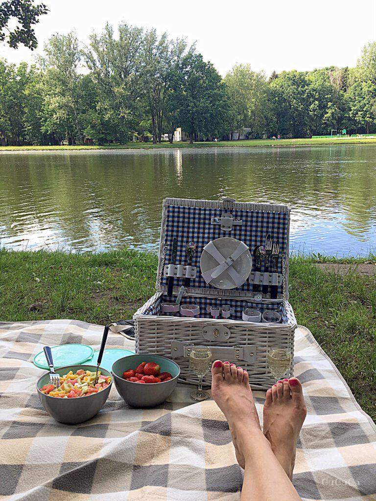 urodziny piknik