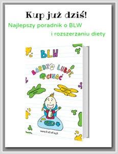 BLW Książka